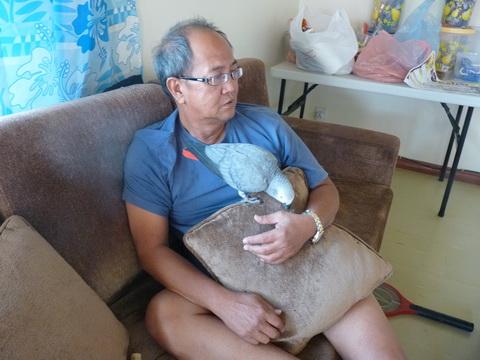 shanlung с попугаем