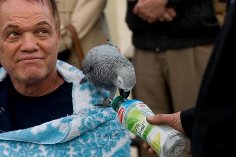птицы открывает бутылку