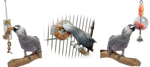 Купить игрушки для попугаев